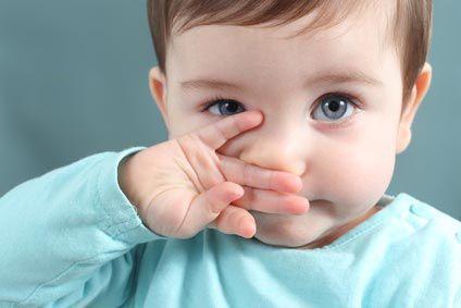 L'odorat : Un nez sensible !