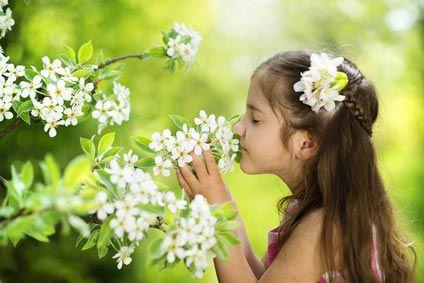 Dans le jardin: des plantes toxiques pour bébé !